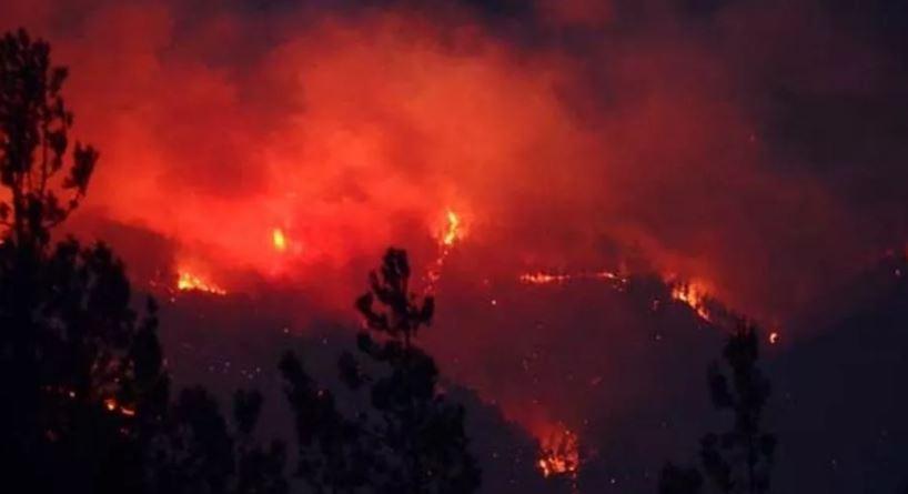 Adana Kozan'daki orman yangınıyla ilgili 3 kişi gözaltına alındı