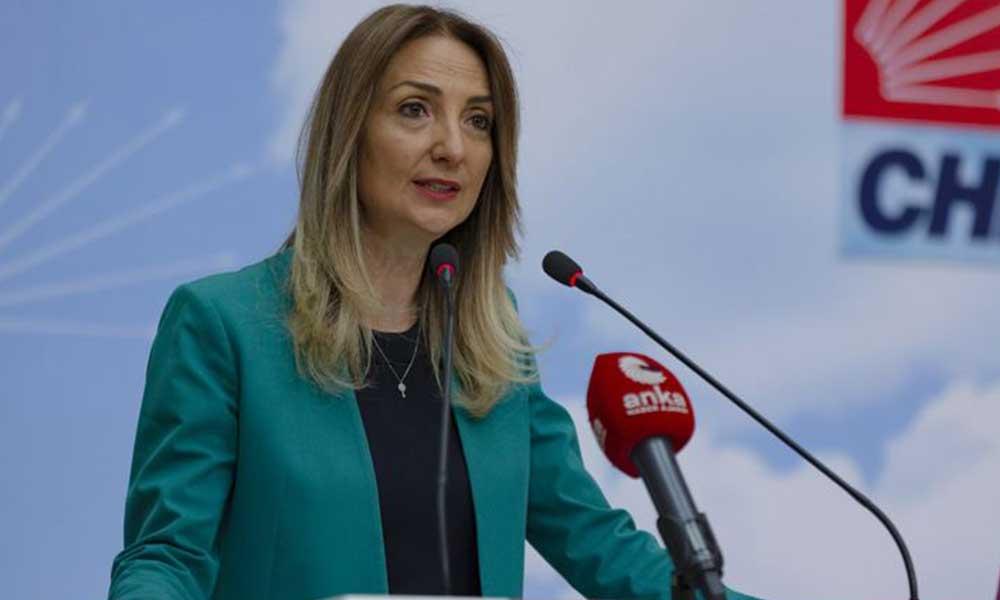 Aylin Nazlıaka hakkında suç duyurusu
