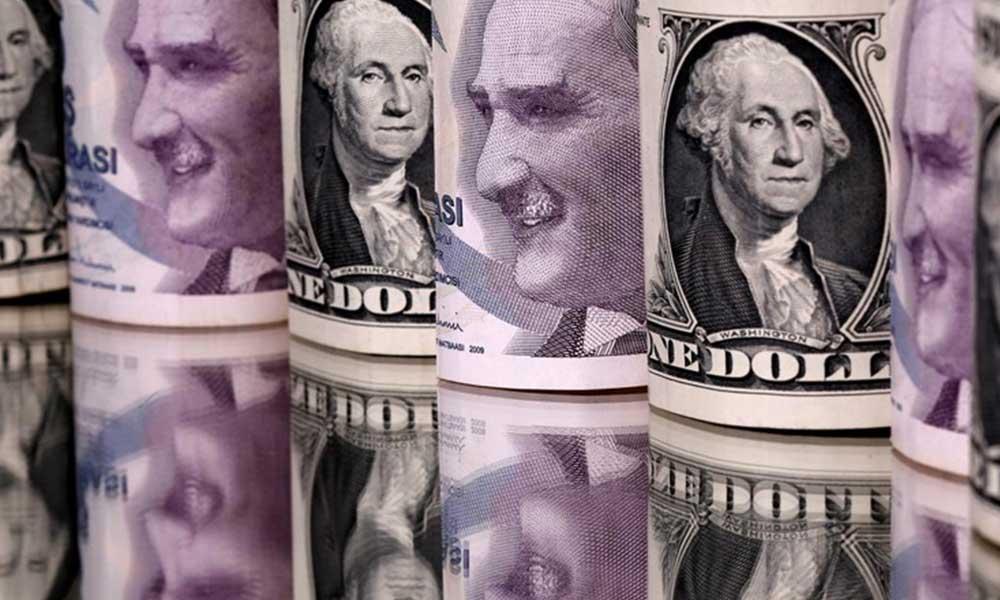 Alman bankasından korkutan dolar tahmini!