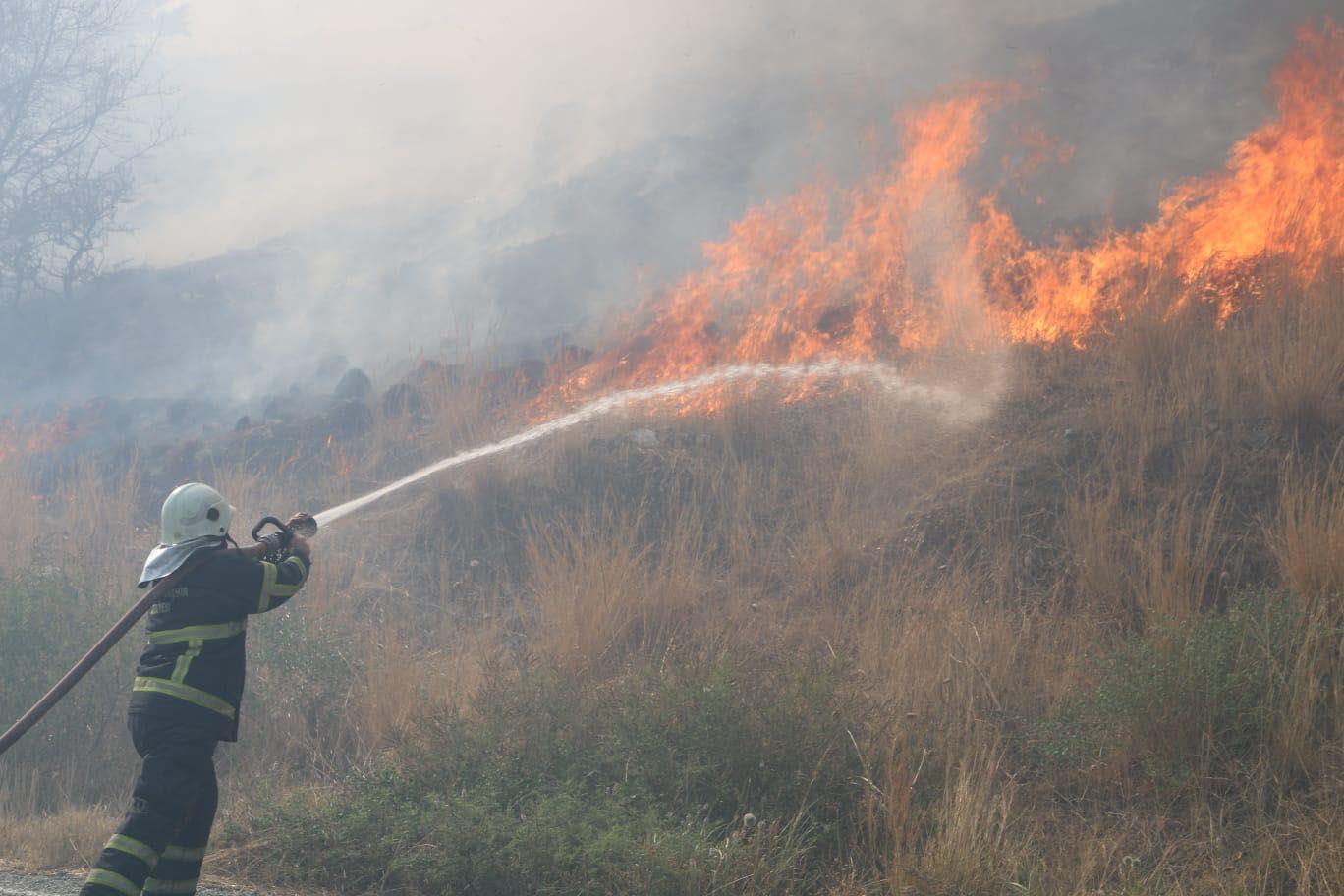 Aydın'da antik kent yakınında yangın!