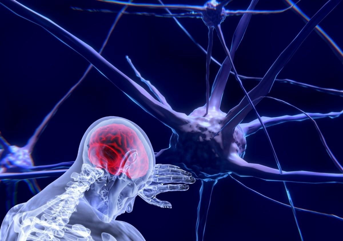 Elon Musk'ın son girişimi Neuralink 2020'de insan beynine çip takacak!