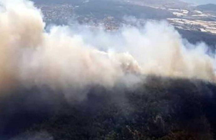 Ege'den orman yangını haberleri art arda geldi! İzmir, Bodrum, Muğla, Manisa…