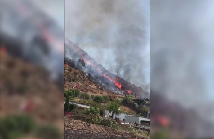 Bodrum'da Kıvanç Tatlıtuğ'un yazlığının olduğu bölgede yangın