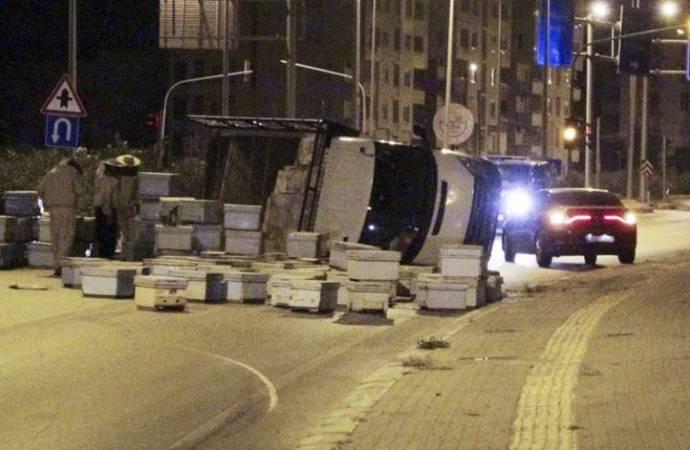 Kovan taşıyan kamyon kaza yaptı; arılar etrafa saçıldı