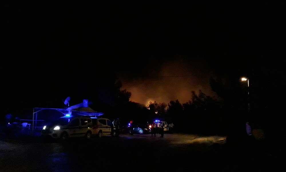 Ayvalık'ta orman yangını: 'Bölgede yoğun rüzgar var'