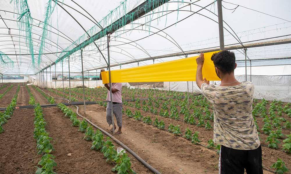 Hem çiftçinin maliyeti düşecek hem tüketici daha temiz ürün alacak