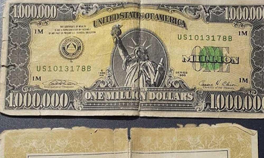 Jandarma üst aramasında bir milyon dolarlık banknot ele geçirdi