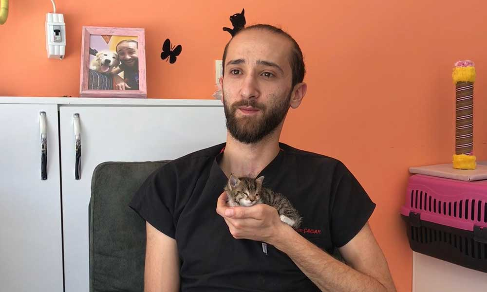 Sokak ortasında bitkin halde kedi bulundu: Down sendromu tanısı konuldu