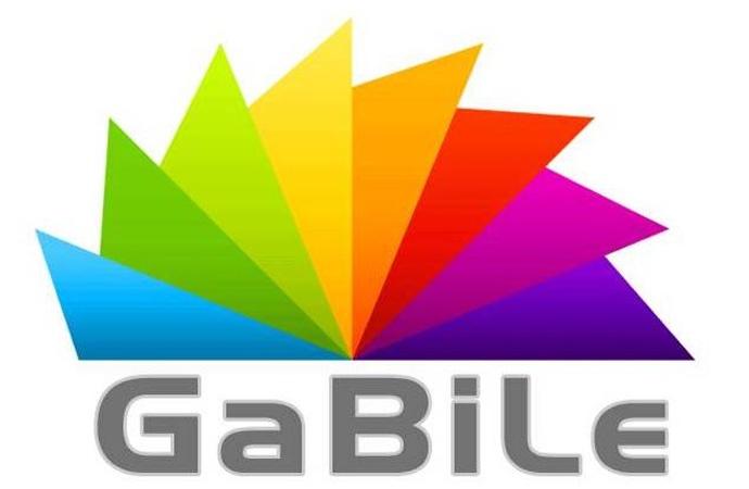 İnternet sitesine bile ayrımcılık! Gabile'ye erişim engeli