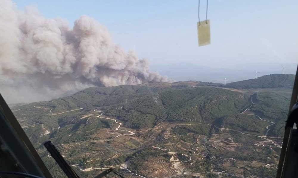 Aydın'ın Söke ilçesinde orman yangını