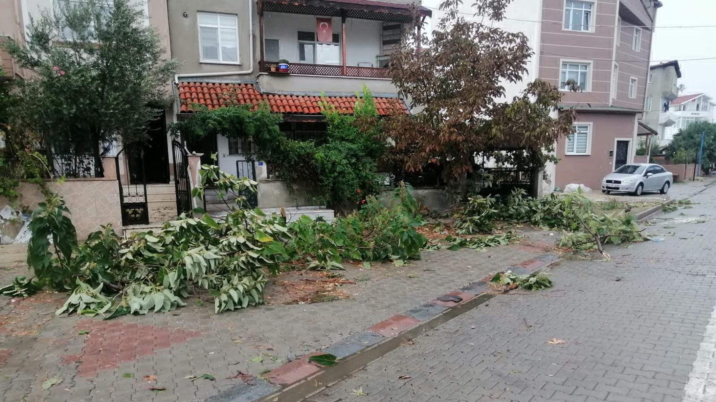 Tekirdağ'ı hortum vurdu! Ağaçlar devrildi, çatılar uçtu