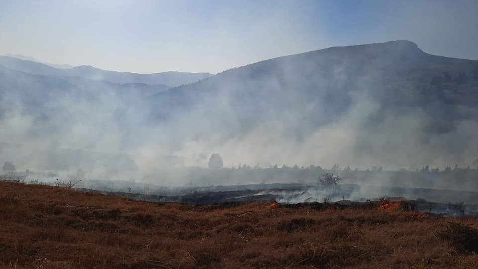 Kayseri'de orman yangını