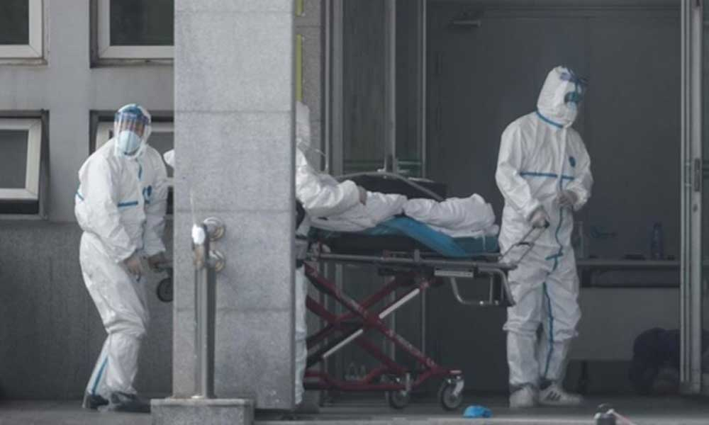'Ciddi önlemler alınmazsa ölüm oranları beş kat artabilir'
