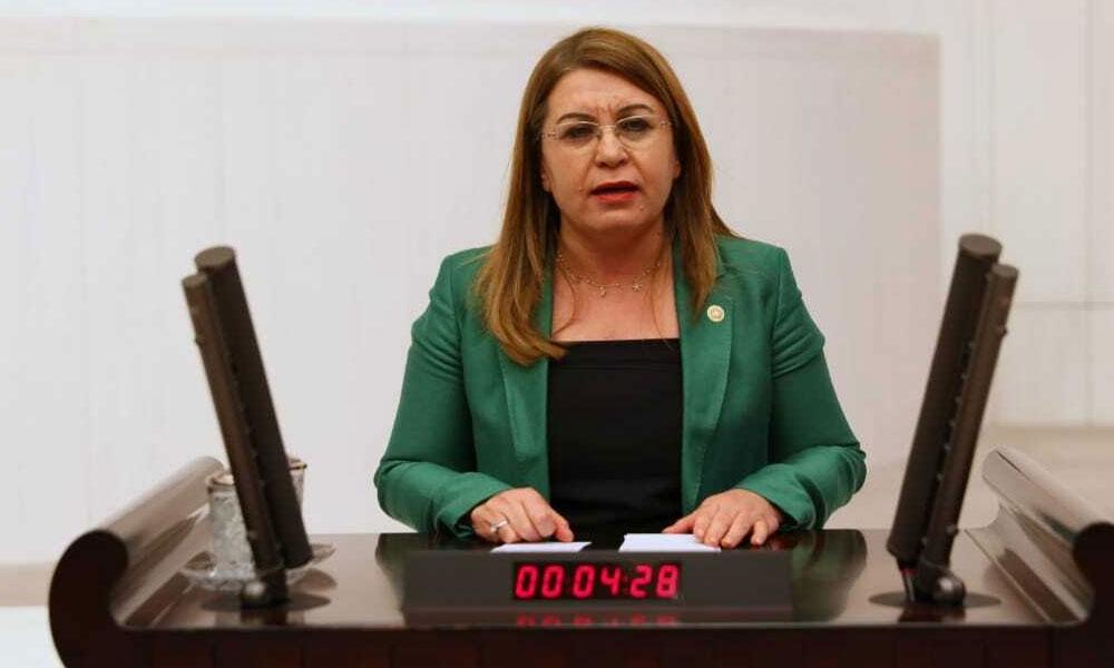 CHP hayvan hakları için 4 farklı yasa teklifi verdi