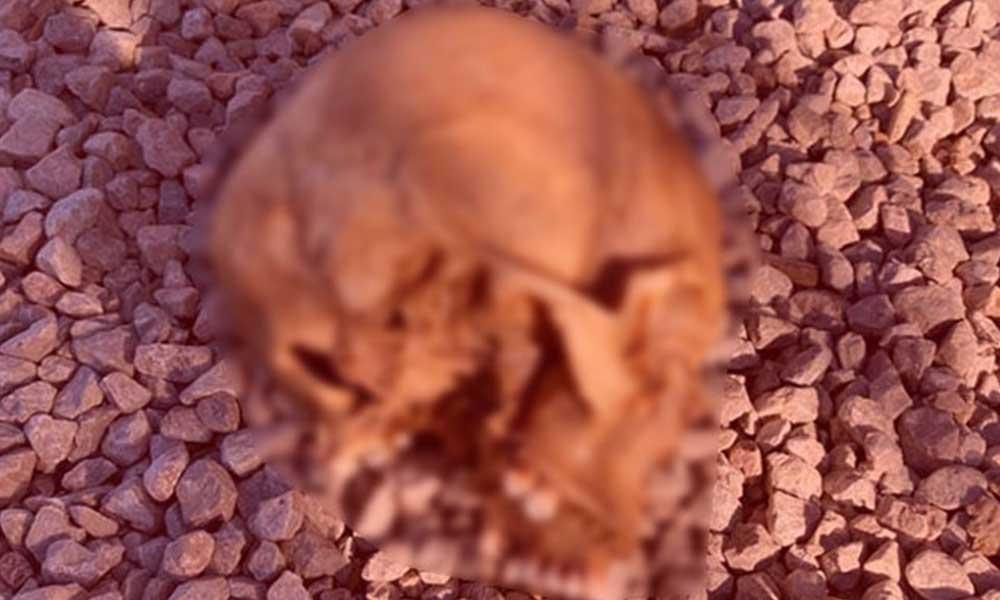Tersanede bulunan kafatasının DNA sonucu belirlendi: Geçen yıldan beri haber alınamayan Mehmet Ali'ye ait çıktı