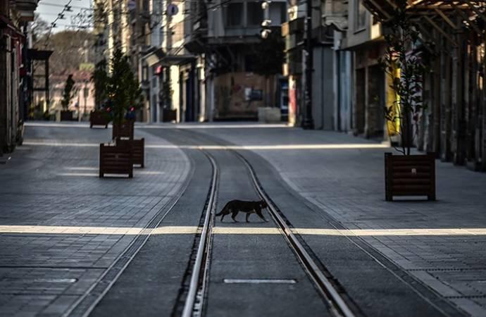 Reuters'a konuşan yetkili: Vaka sayısı açıklananın beş katı, sokağa çıkma yasakları gelebilir