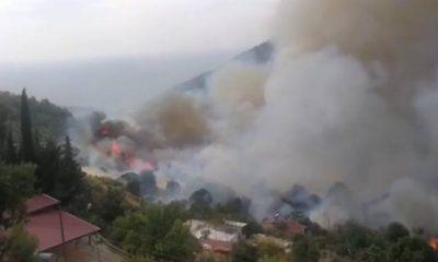 Hatay, Mersin ve Adana'da orman yangını! Evler tahliye ediliyor