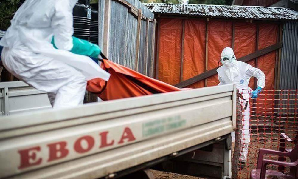Ölümcül virüs Ebola'nın tedavisi bulundu