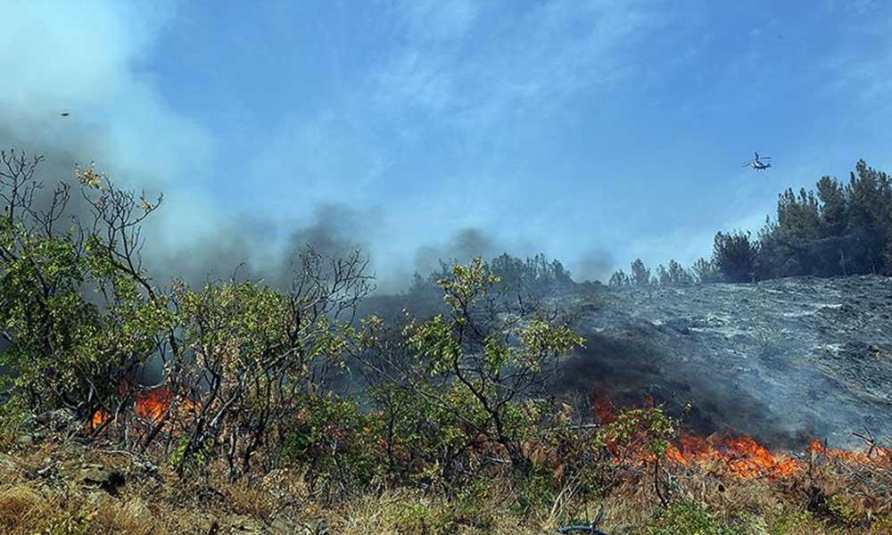 Kahramanmaraş ve Osmaniye'de çıkan orman yangınları kontrol altına alındı