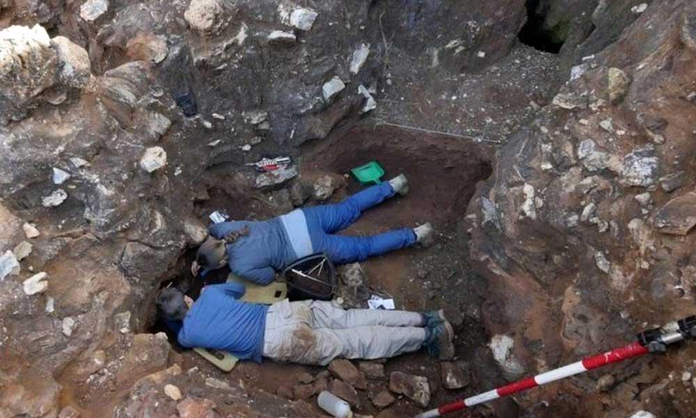 'İnsan evrimine ışık tutabilir': İşte 2 milyon yıllık insansı kafatası