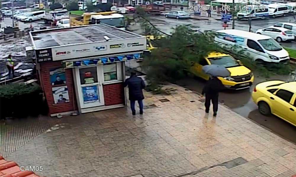 Taksinin üzerine ağaç devrildi: O anlar güvenlik kamerasına yansıdı