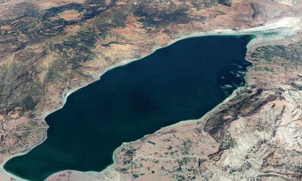 Dünyada sadece Burdur Gölü'nde bulunuyor, yok olmak üzere
