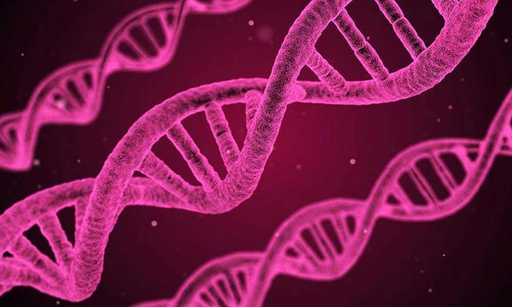 Aradıklarını gözlerinden kaçırmışlar… Koronavirüsün genetik kodu çözüldü!