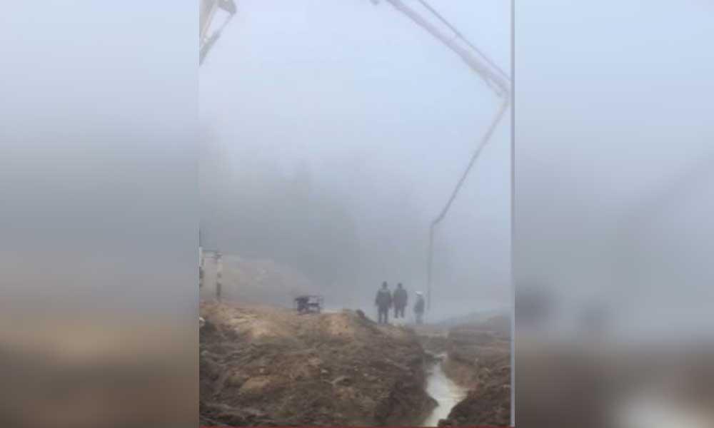 AKP'li belediye izin verdi… Endemik bitki alanına beton döktüler