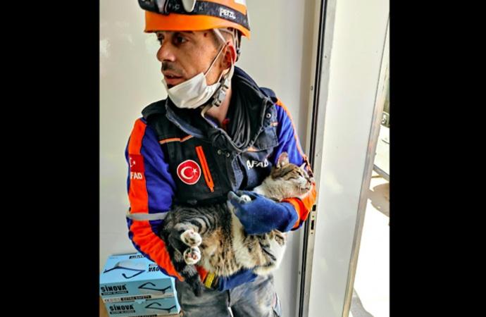 Rıza Bey Apartmanında kalan kedi 70 saat sonra kurtarıldı