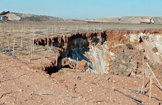 Madene sınır yok! Yurttaşın tarlası talan edildi