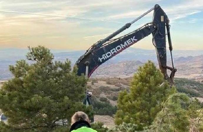 Nevşehir'in kalbine hançer: Maden için ağaçları kestiler