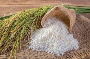 Çeltik ve pirinçte gümrük vergisi oranları düşürüldü