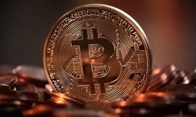 Bitcoin dolandırıcılarına operasyon: 8 gözaltı