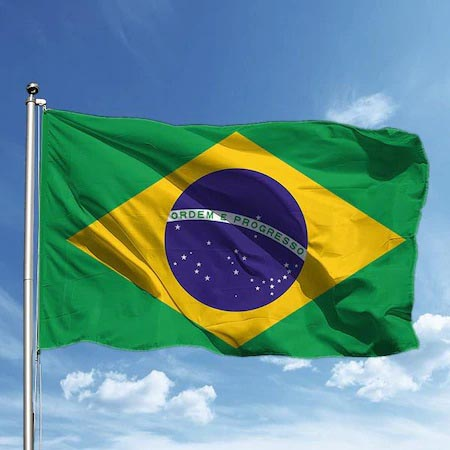 Brezilya'da soyguncular terör estirdi