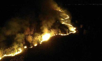 Eber Gölü'nde yangın: Yanan kamışlar halkımızın ekmeği