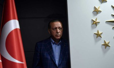 Erdoğan'ın 'bozkurt' sessizliğine tepki