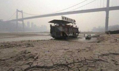 İBB ve 40 mega kentten iklim krizi uyarısı!