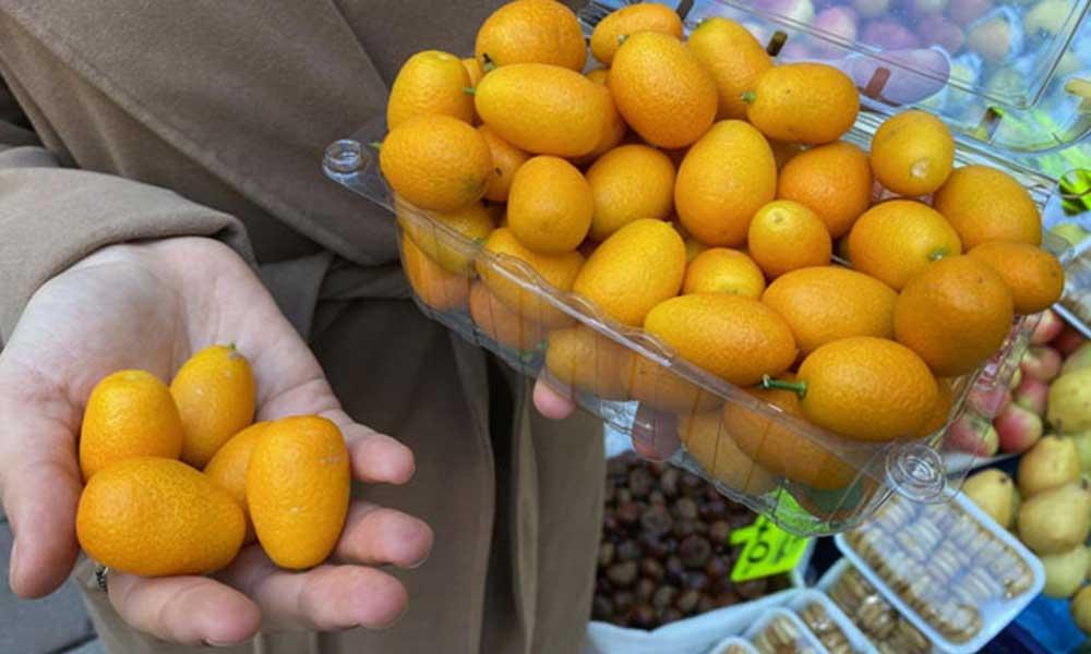 Bağışıklık sistemini güçlendirmek isteyenlerin yeni meyvesi 'kamkat'