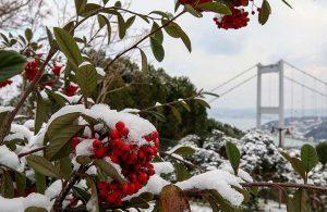 Meteorolojiden rahatlatan haber: Sibirya soğukları geliyor