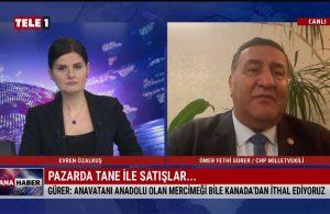 CHP Niğde Milletvekili Ömer Fethi Gürer: Çiftçimize vermedikleri parayı ithalata, yabancıya veriyorlar