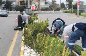 Belediye ekipleri kent genelinde çalışmalarını sürdürüyor