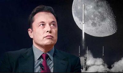 Elon Musk'tan karbon yakalayana 100 milyon dolar ödül!