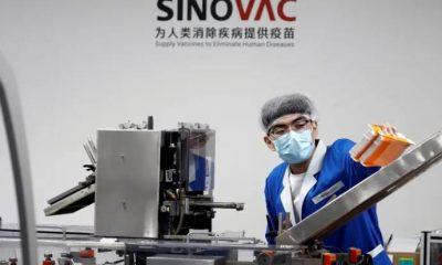 Sinovac'tan açıklama: Türkiye'den web sitesine erişim neden engellendi?
