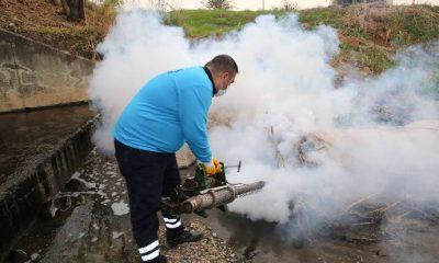 Büyükşehir sivrisinek ve haşereye karşı ilaçlama yapıyor