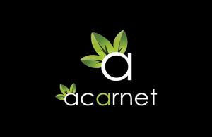 Kurumsal web tasarım ajansı : Acarnet