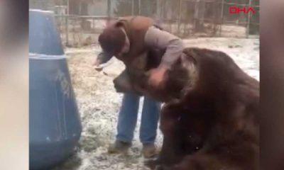 Vahşi yaşam parkındaki ayılara doğum günü sürprizi