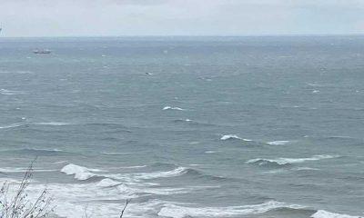 Bartın'da gemi faciası: 2 ölü 5 yaralı