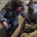Donmak üzere olan anne ile 6 yavrusunu kurtardı
