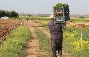 Çiftçiler 2 Şubat'ta Ankara'da buluşuyor: Gariban çiftçinin sesi duyulsun