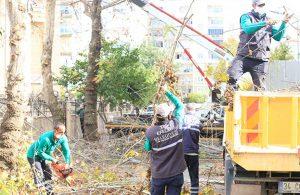 Yeşil ekipler Girne Mahallesi'nde
